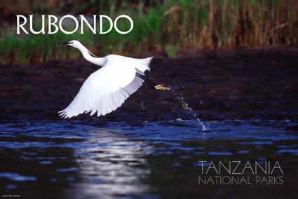 Poster del Parco Nazionale - tanzaniaparks.com